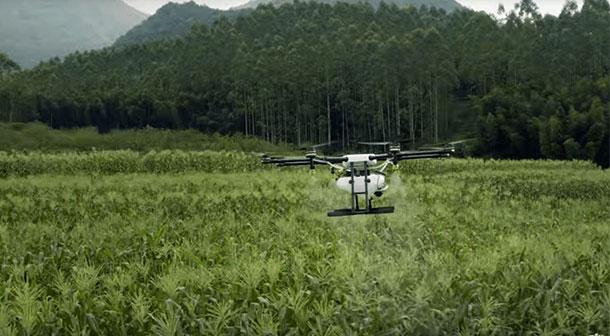 پهپاد سم پاش کشاورزی